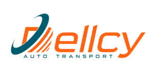Dellcy logo